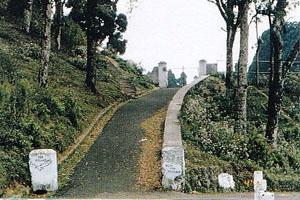 Dow Hill,(Kurseong, West bengal)
