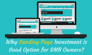 Why Landing Page Investment is Good Option for SMB Owners?