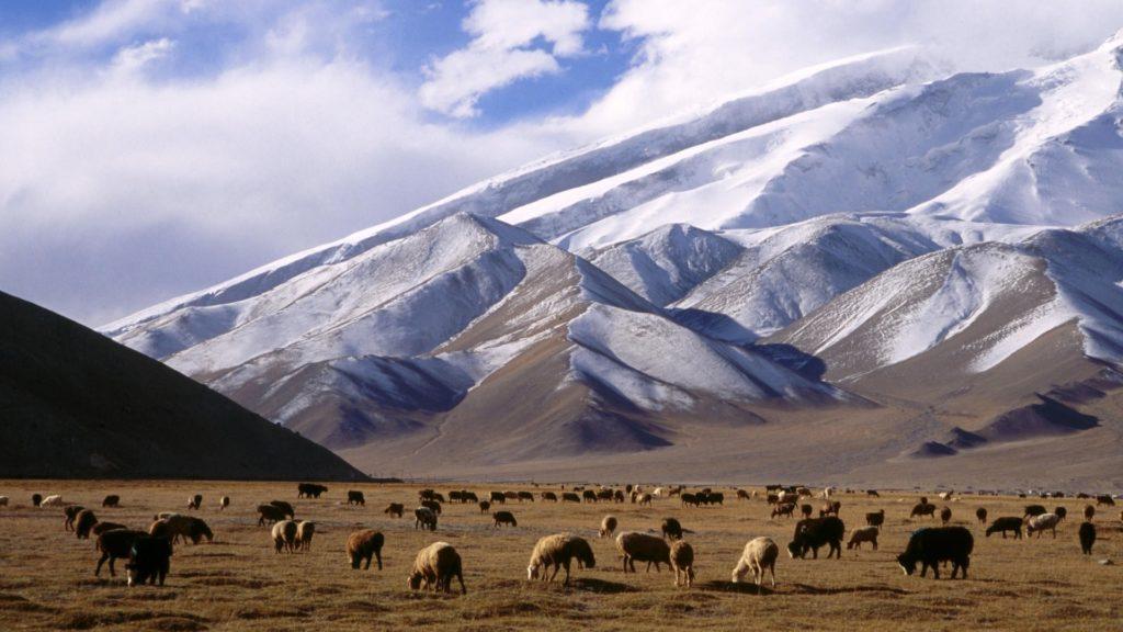 Xinjiang Uyghur Autonomous Region