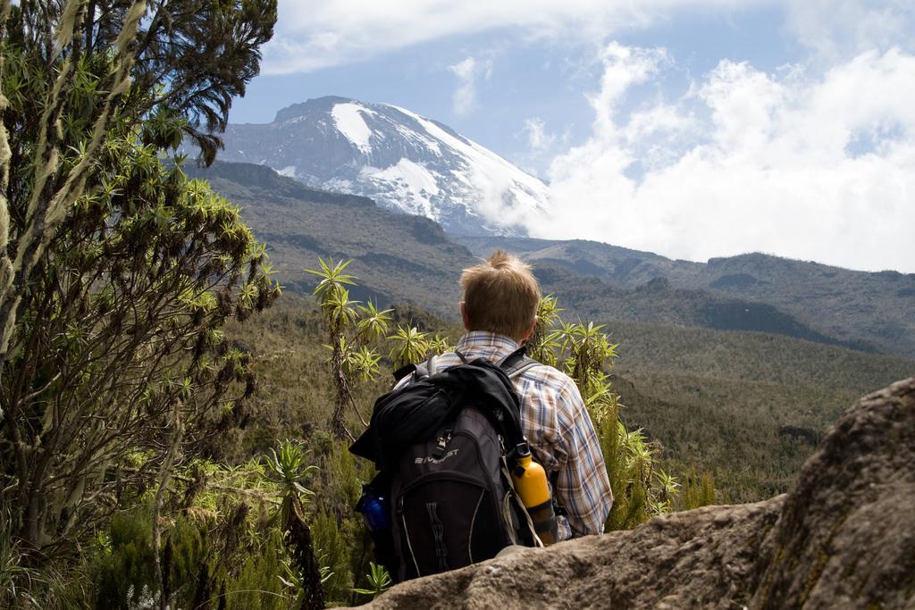 Trek Itinerary of Kilimanjaro Trek