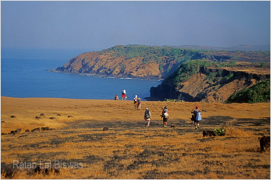 During coastal trekking towards Ratnagiri, Maharashtra