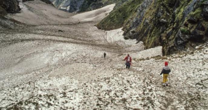 Munshiyari – Panchu Glacier Trek