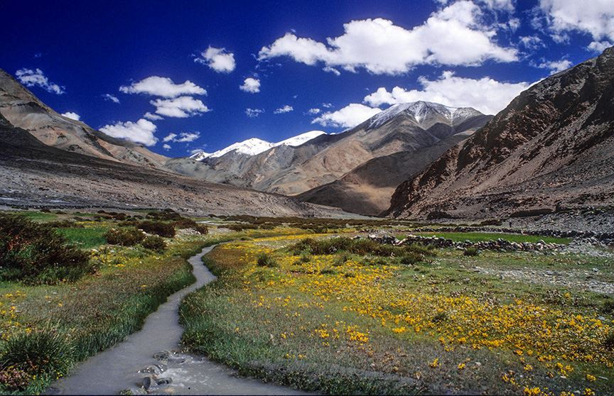 Near Sumdo village, Rupshu Valley, Ladakh, 1995
