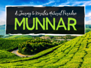 Munnar travelogue
