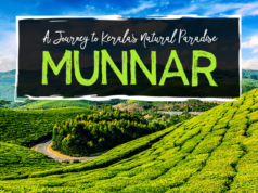 Munnar travelogue