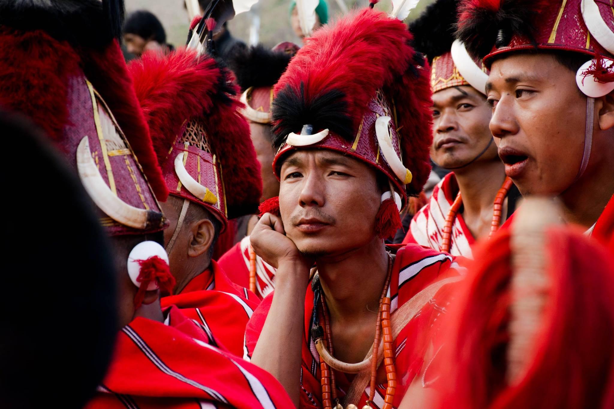 Hornbill Nagaland