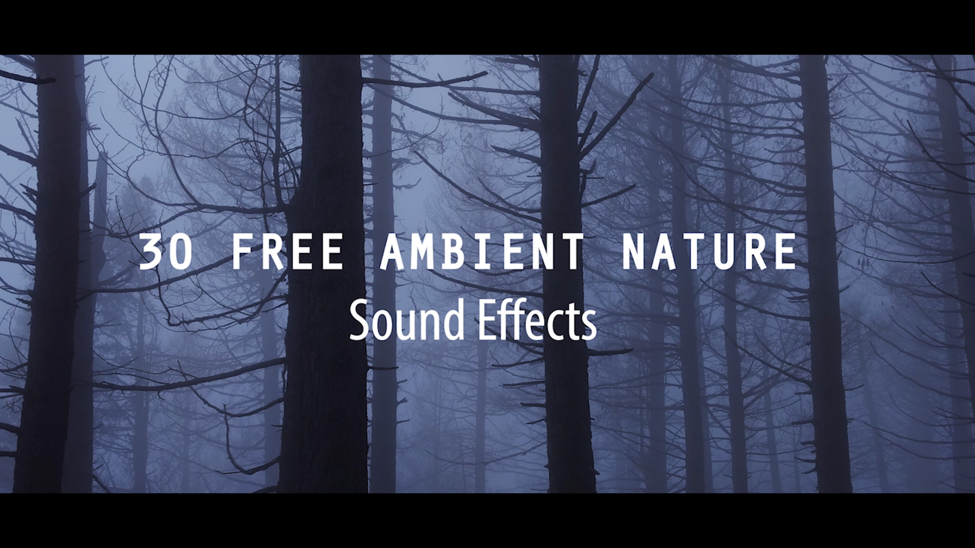 Download 30 FREE Ambient Nature Sounds Effect